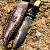 "12.5"" Damascus Steel Stag Horn Handle Hunting Knife Hand Made"