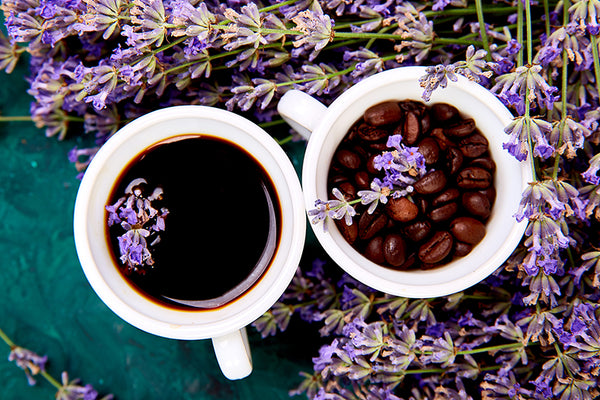 Lavender herb with coffee.