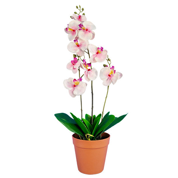 Ranka plantas artificiales orqu dea hermosas flores for Orquideas artificiales