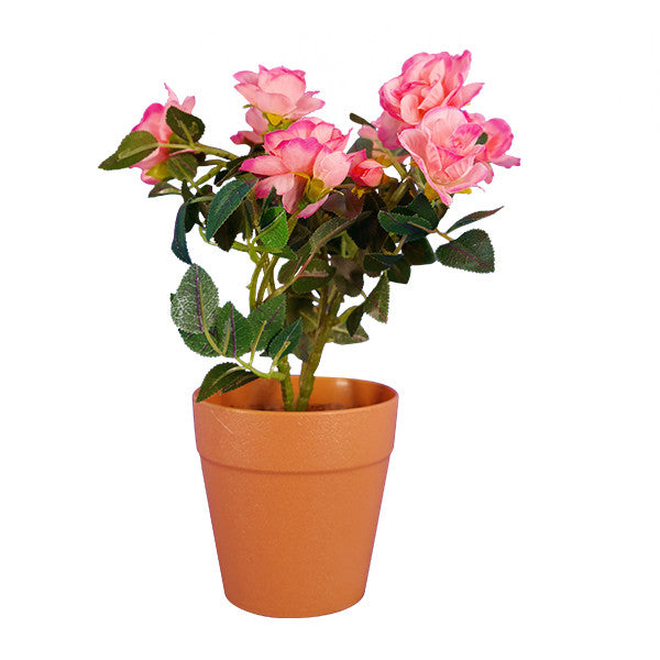 Ranka plantas artificiales rosal bonsai flores for Plantas en macetas