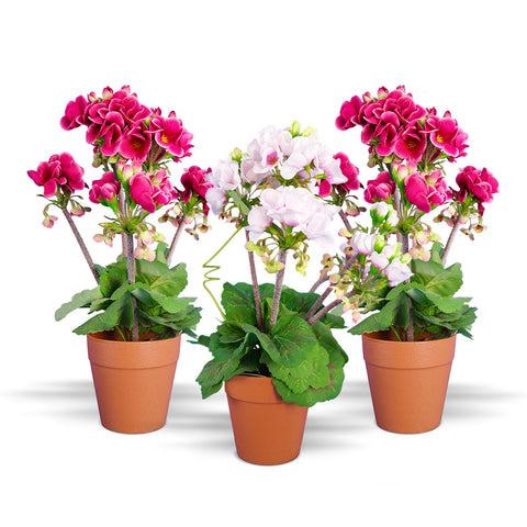 Ranka plantas artificiales muros verdes artificiales for Plantas decorativas resistentes