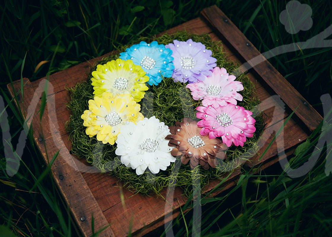 Fancy Boutique Jeweled Large Gerber Daisy Hair Flower Clips Ema Jane