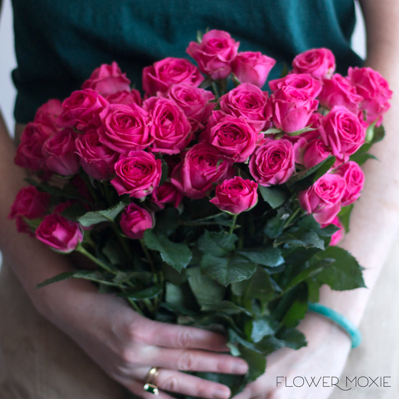 Deep Pink Spray Roses