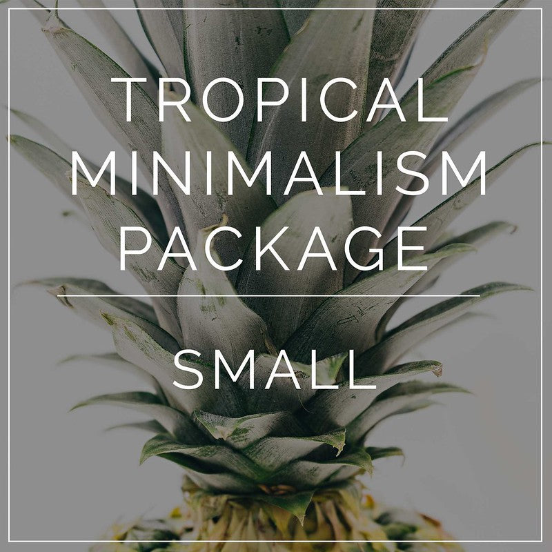 Tropical Minimalism- Small Package