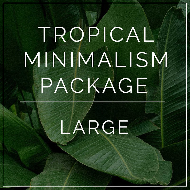 Tropical Minimalism- Large Package