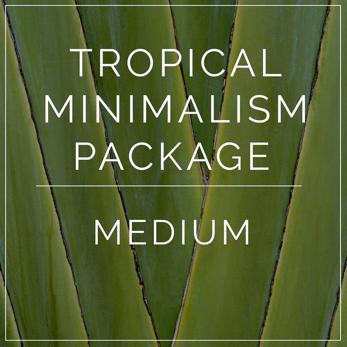 Tropical Minimalism- Medium Package