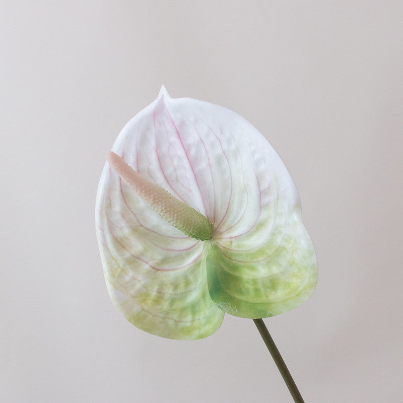 Faux White Anthurium Tropical Wedding Flower
