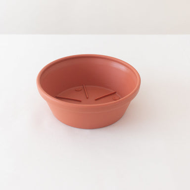 Terracotta Resin Saucers- 5 Vases