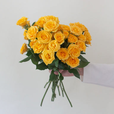 Yellow Spray roses