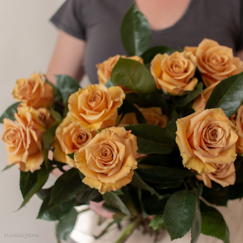 golden combo rose