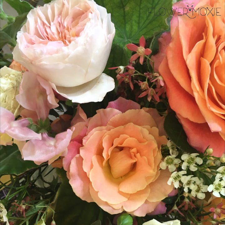 Miss Piggy rose | pink rose | pink orange rose | vibrant rose | DIY bride | DIY flower ideas | DIY wedding ideas | DIY bouquet ideas | DIY bridesmaid | DIY bridal bouquet ideas | flower moxie | wedding ideas | bridesmaid ideas | how to save money wedding