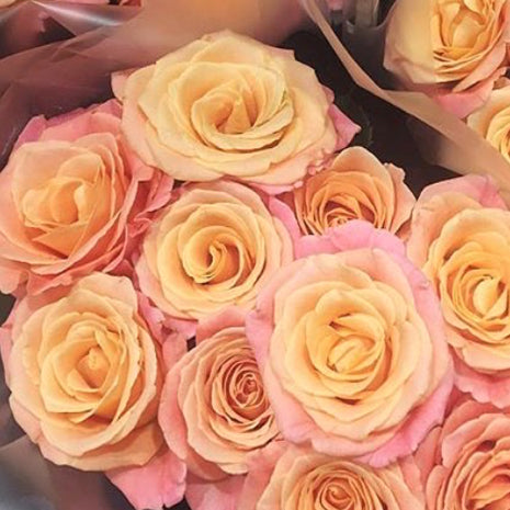 Miss piggy rose flower moxie miss piggy rose pink rose pink orange rose vibrant rose diy bride mightylinksfo