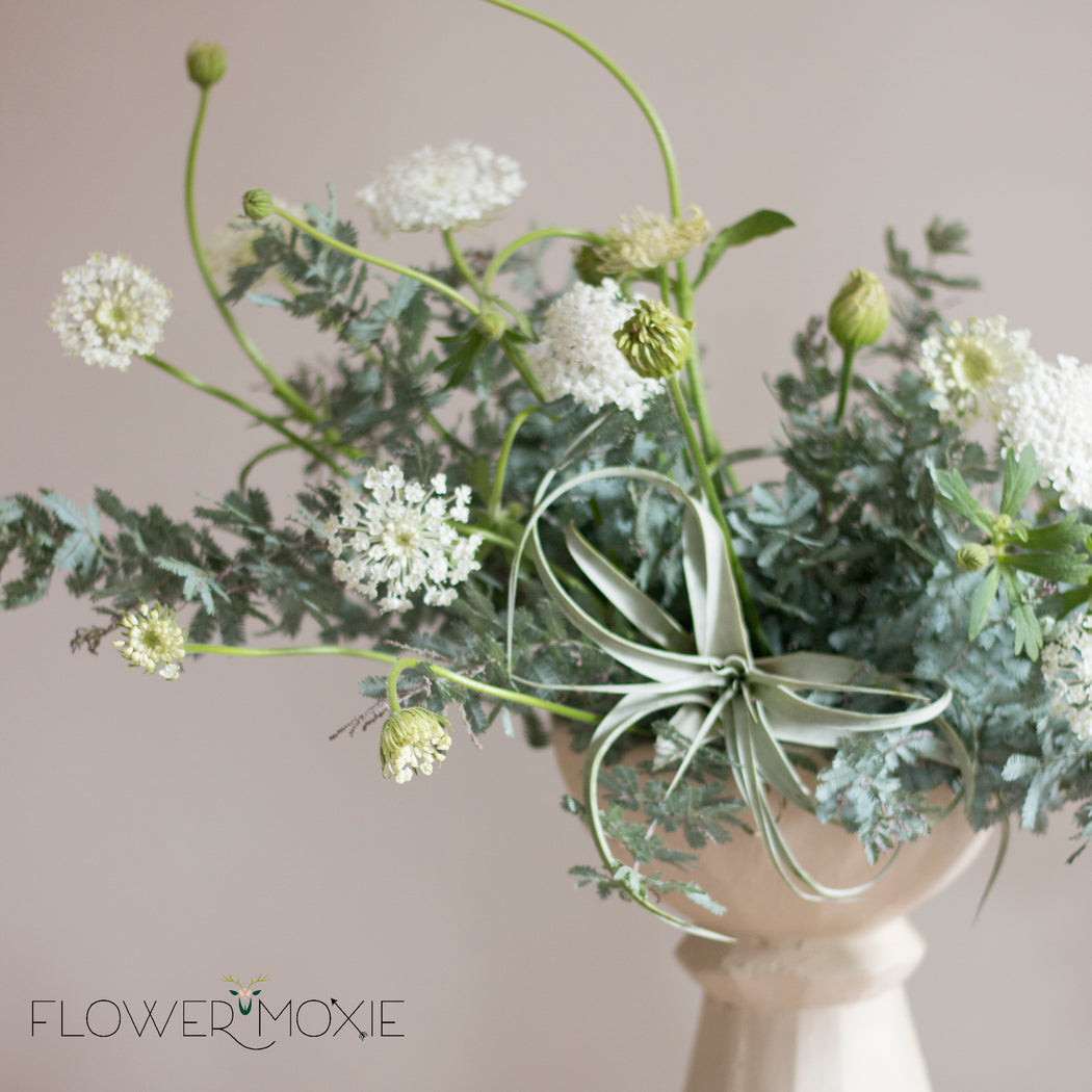 Feather Leaf Acacia | DIY bride | DIY flowers | DIY wedding | how to save money at your wedding | wedding ideas | DIY bridesmaid | DIY bouquet | queen anne's lace | asymmetrical arrangement | DIY centerpiece