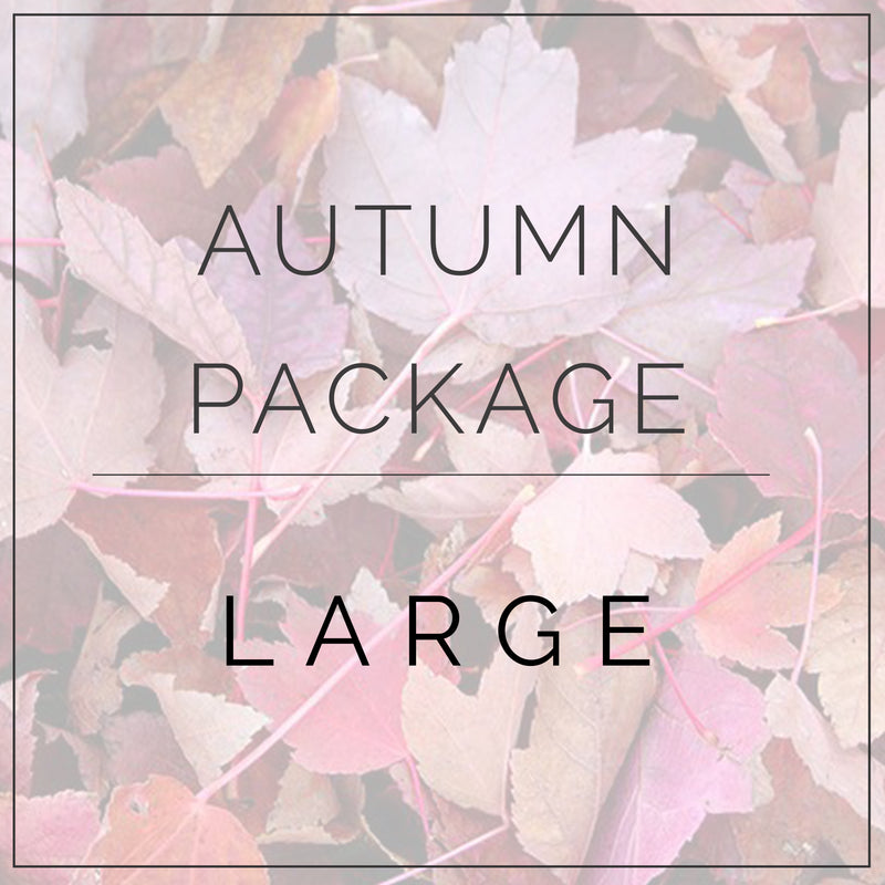 Autumn- Large Package