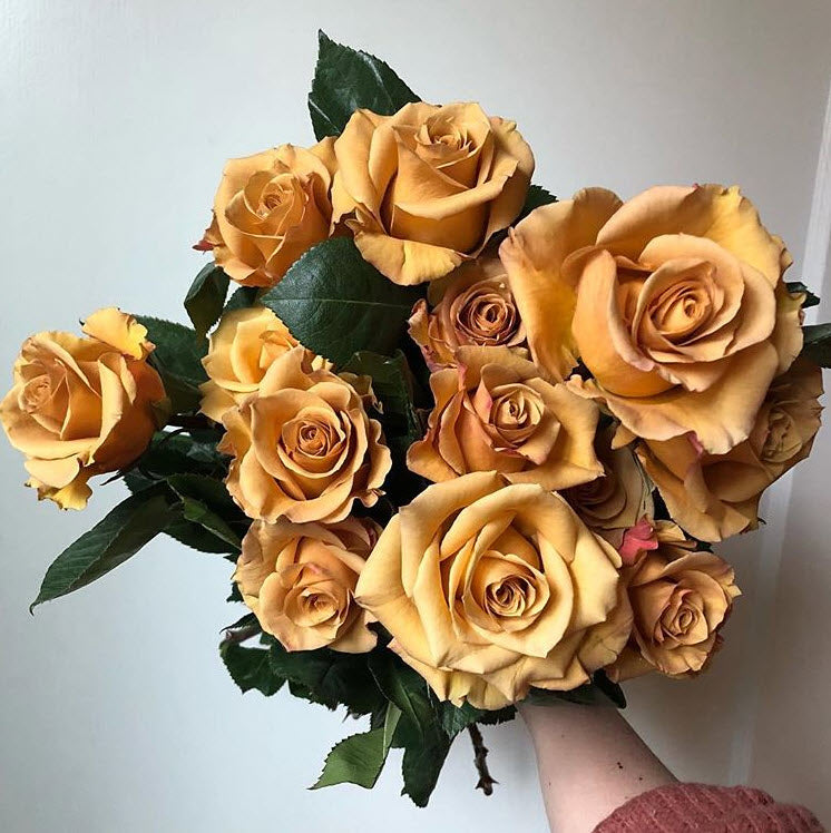 Combo Gold Roses