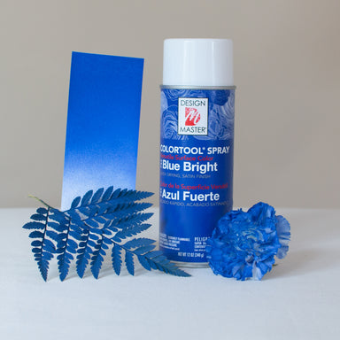 Bright Blue Design Master Colortool Floral Spray Paint