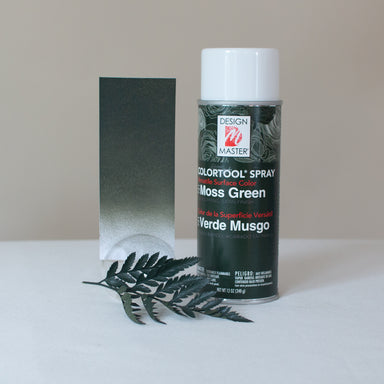 Moss Green Design Master Colortool Floral Spray Paint