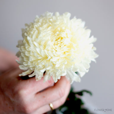 white football mum, diy flowers, flower moxie