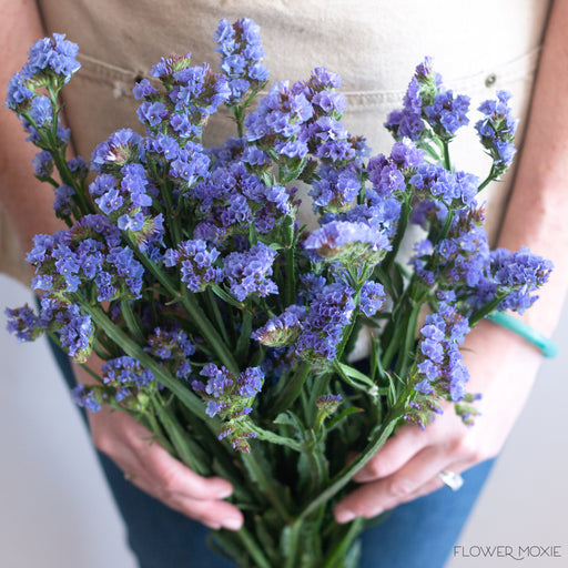 Statice flower moxie statice blue statice purple statice flower moxie flowermoxie diy wedding flowers mightylinksfo