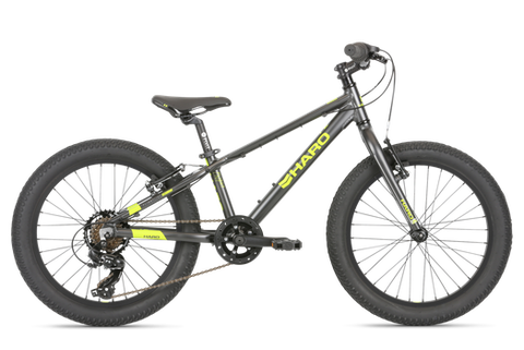 Haro Flightline 24 Plus in Gray