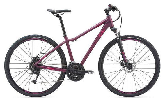 Giant Rove 2 DD Disc Small in Pink