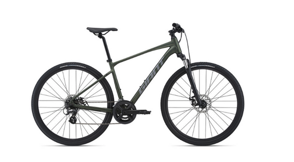 2021 Roam 4 Disc Large in Moss Green