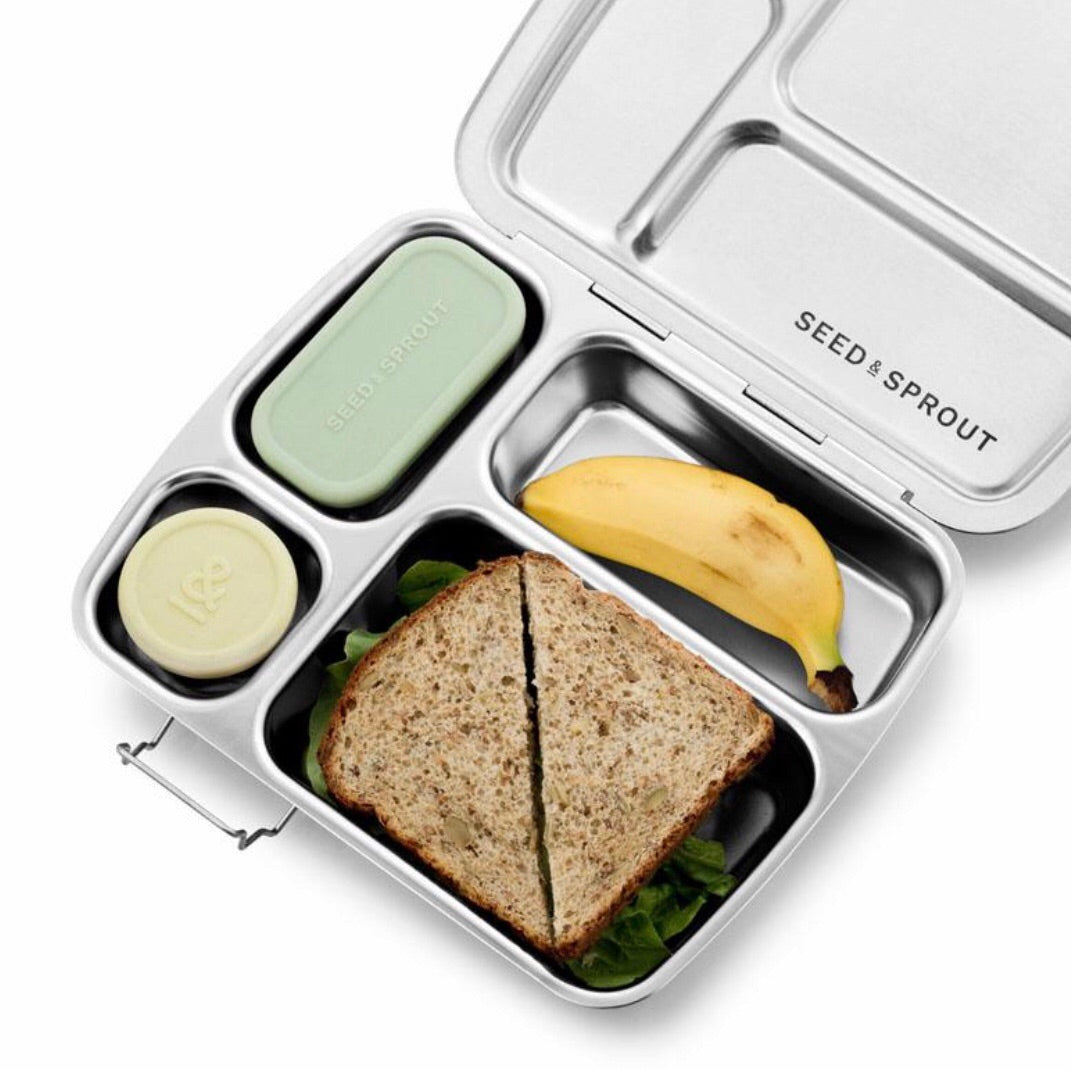 Seed & Sprout Stainless Steel Lunchbox