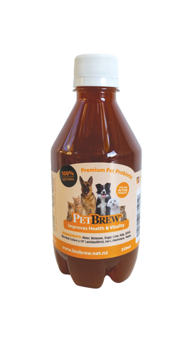 PetBrew x 3 MASSIVE SALE