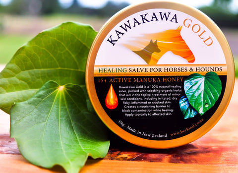 Kawakawa Gold & Active 15+ Manuka Honey for Hounds & Horses