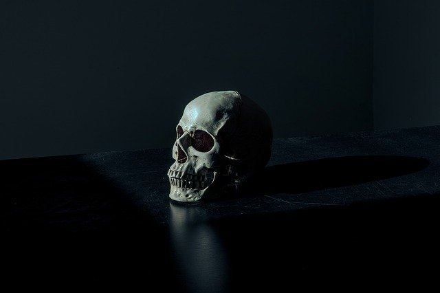 What's The Meaning of Skull Jewelry? black background