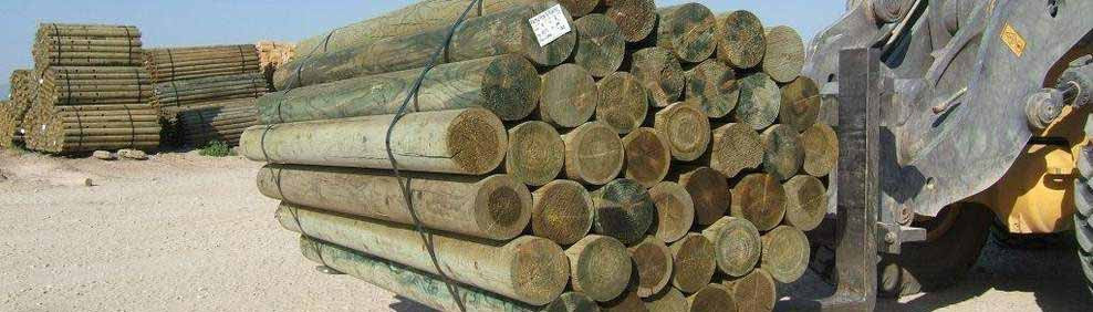 Treated Wood Posts
