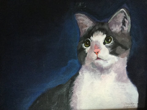 Acrylic: The Little Cat