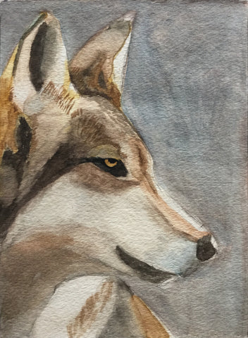 Water Color: Dire Wolf