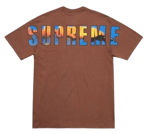 Supreme Crash Tee - Brown