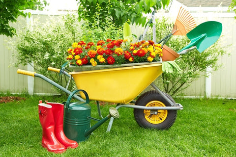 Landscaping & Gardening Service - Request Quote