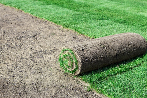 Sod & Grass Seeding Service - Request Quote