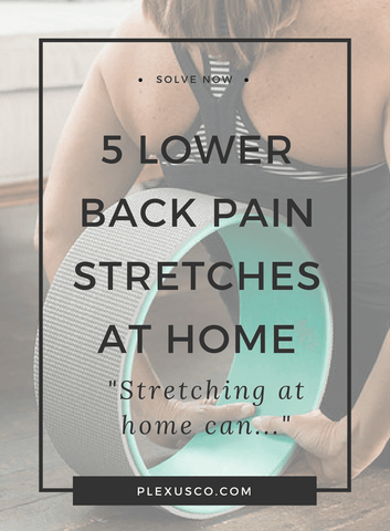 lower back pain stretches at home