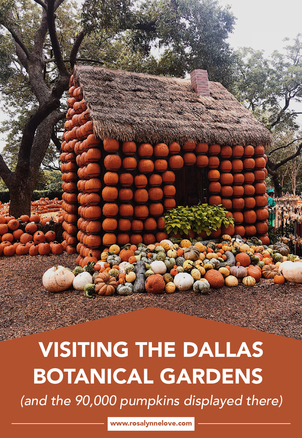Dallas Botanical Gardens & 90,000 Pumpkins