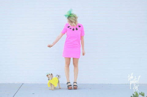DIY Watermelon Costume