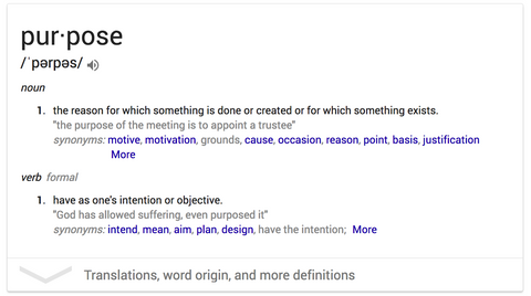 Purpose Definition (Google)