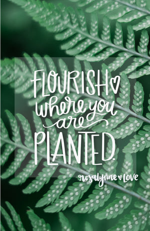 """Flourish Where You Are Planted"" // Phone Background - Rosalynne Love"