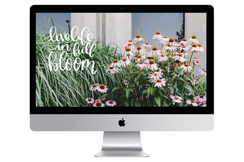 Spring // Free Desktop Background - Rosalynne Love