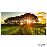 New Zealand - Sunrise - 1