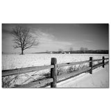 Winter Fence - 1
