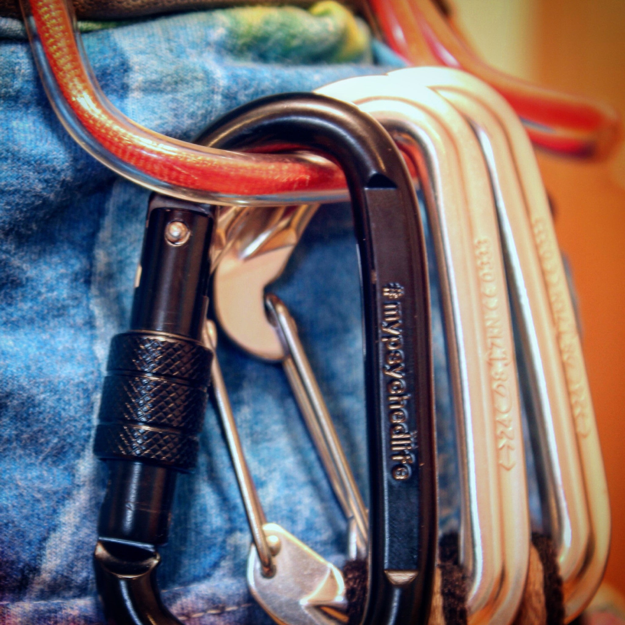 Psyched Life® Carabiners