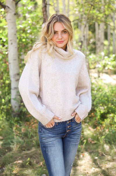 Hollis Oatmeal Turtle Neck Sweater