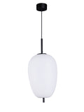 Arlin | Buy LED Hanging Lights Online in India | Jainsons Emporio Lights
