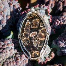 Load image into Gallery viewer, Turritella Agate Pendant