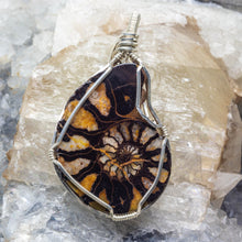Load image into Gallery viewer, Ammonite and Sterling Pendant