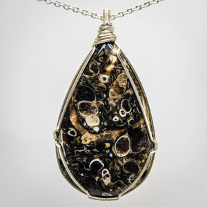 Turritella Agate and Sterling Silver Pendant
